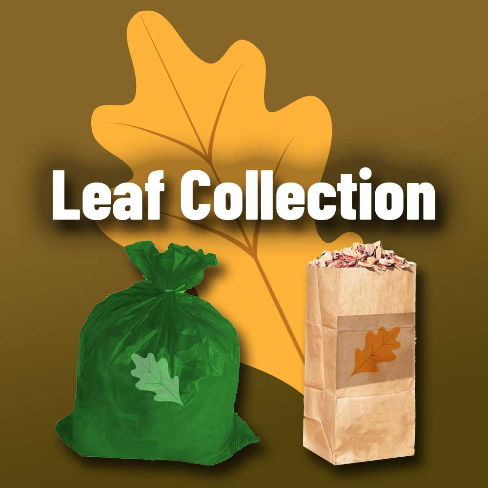 leaf-and-limb-pickup-2